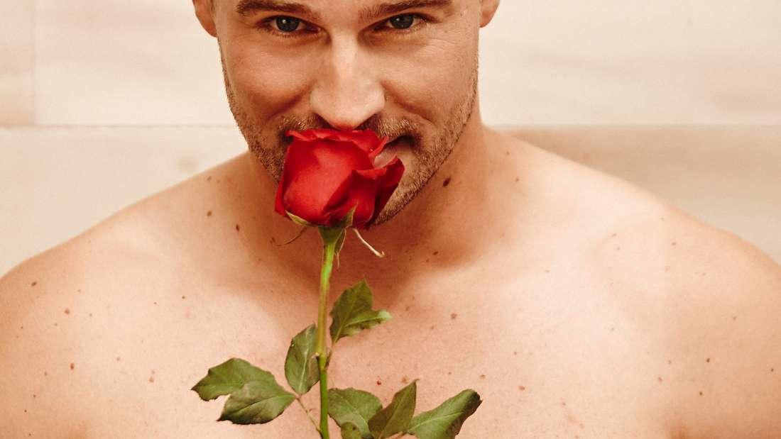 Bachelor in Paradise Kandidaten Infos Sendetermin Start RTL 2019