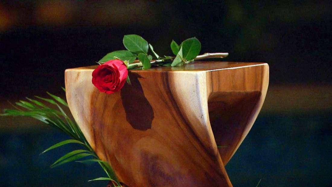 Welche Kandidatin hat das Herz des Bachelors erobert und erhält die letzte Rose?