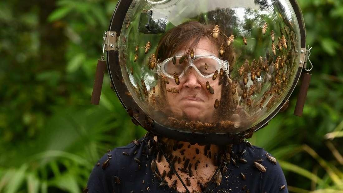 Daniela Büchner mit einem Glas Kakerlaken um den Kopf