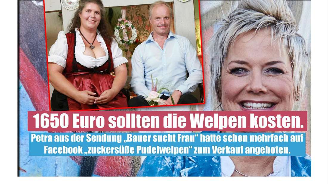 Welpen-Razzia bei dr TV-Bäuerin Petra und ihrem Mann Norbert aus dem Kreis Höxter. Das Paar, dass sich bei Inka Bauses TV-Show kennenlernte, verkaufte Tiere wohl illegal im Internet.