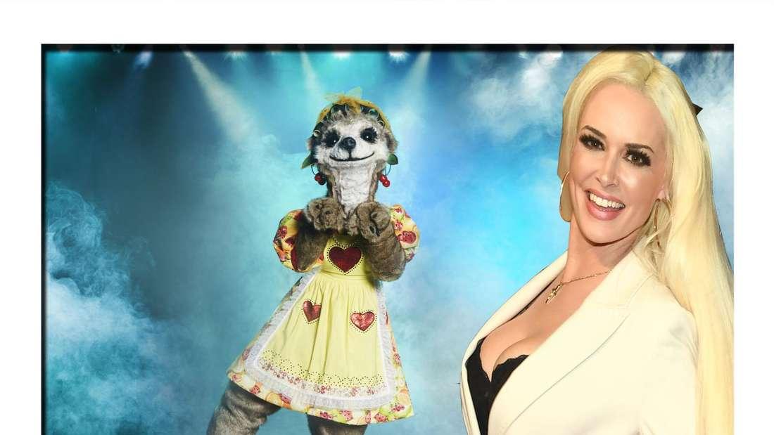 Das Erdmännchenkostüm aus der Sendung The Masked Singer und Daniela Katzenberger