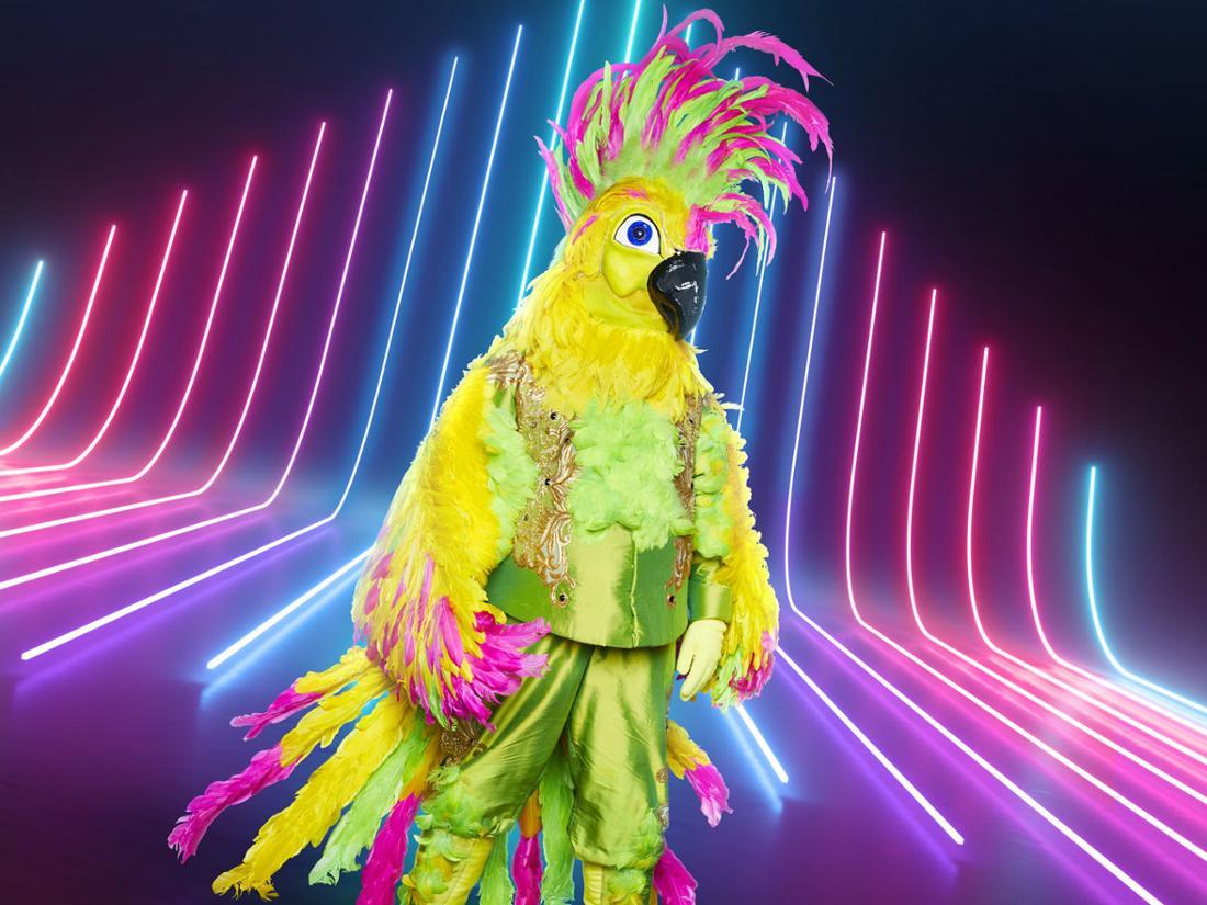 """Wer ist der Kakadu bei """"The Masked Singer"""" auf ProSieben?"""