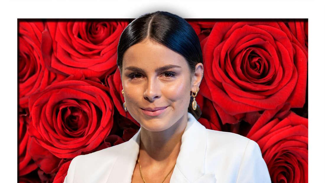 Lena Meyer-Landrut steht vor einem Hintergrund, der etliche rote Rosen zeigt (Fotomontage)