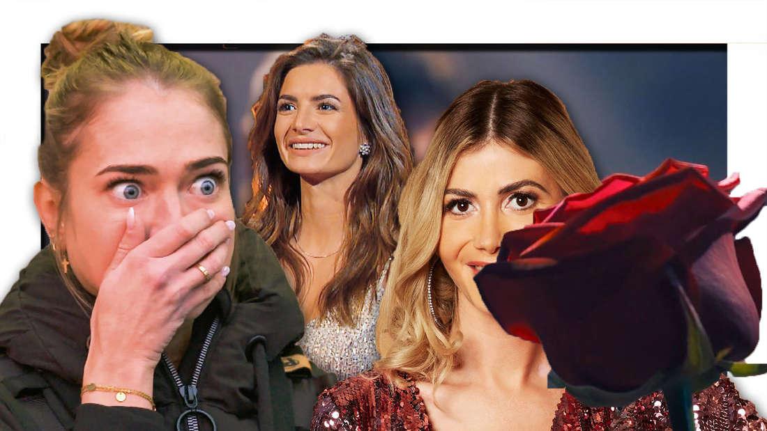 Mimi, Michele und Stephie, eine Rose (Fotomontage)