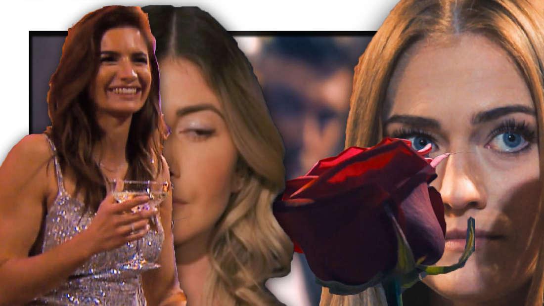 Michele, Stephie und Mimi, eine Rose (Fotomontage)