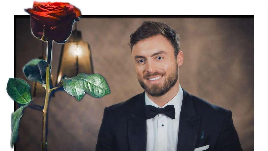 Fotomontage: Bachelor Niko Griesert und eine Rose