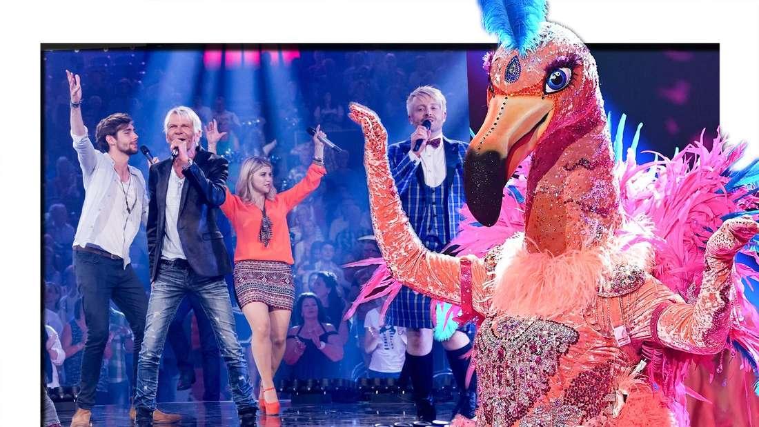 """""""The Masked Singer""""-Zuschauer sind sich sicher: Ein Schlagerstar steckt unter dem Kostüm des Flamingos. (Fotomontage)"""