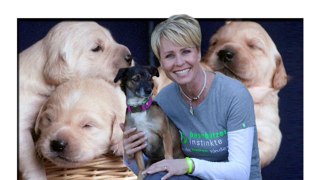 Fotomontage: Sonja Zietlow mit Hund auf ihrem Schoß vor Welpen Hintergrund