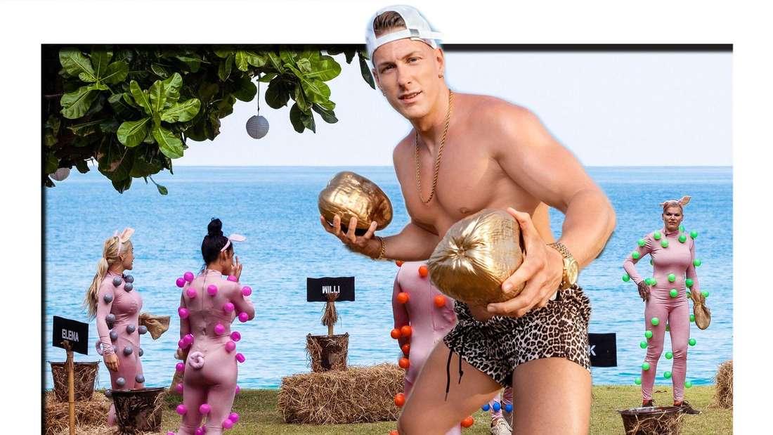 Fotomontage: Calvin Kleinen hält goldene Kokosnuss von Strand Hintergrund bei Promis unter Palmen
