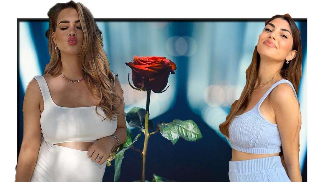 Jessica und Yeliz zeigen ihren Babybauch - im Hintergrund ist eine Rose zu sehen (Fotomontage)