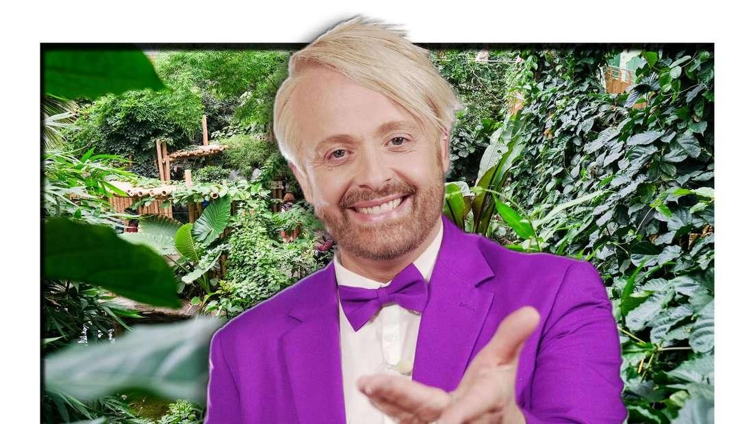 Ross Antony streckt lächelnd die Hand aus - im Hintergrund sieht man einen Dschungel (Fotomontage)