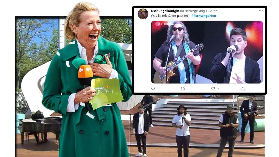 Fotomontage: Andrea Kiewel und Söhne Mannheims im ZDF Fernsehgarten mit Twitter Screenshot