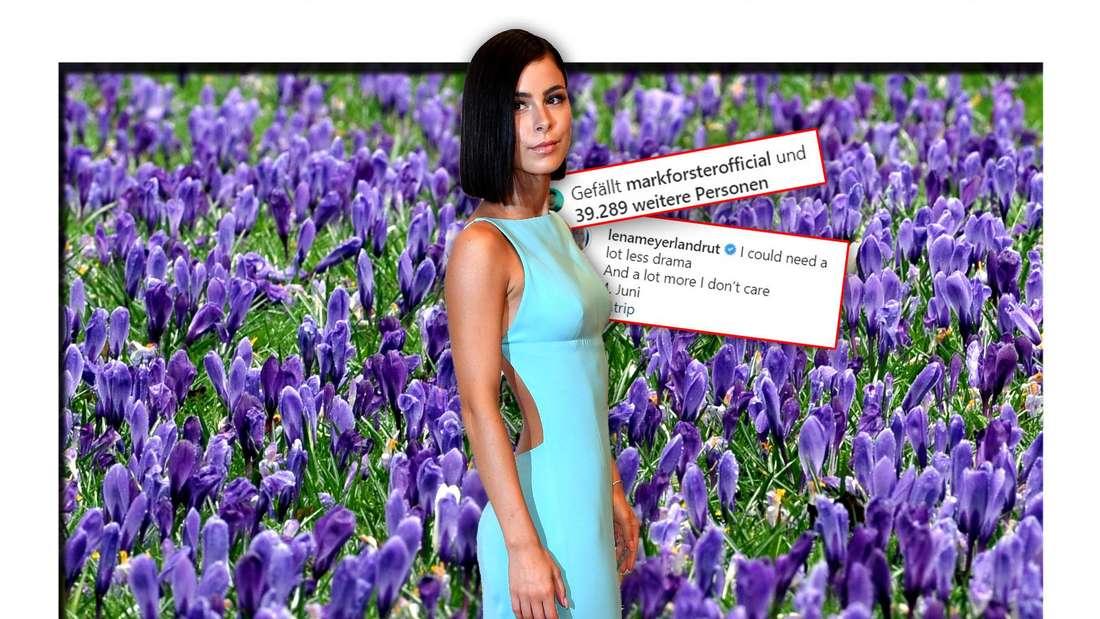 Lena Meyer-Landrut steht vor einem Feld mit blauen Blumen, daneben zwei Instagram-Screenshots (Fotomontage)