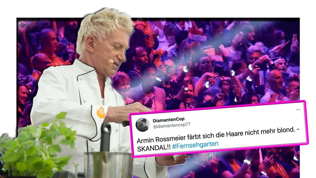 Armin Roßmeier kocht - im Hintergrund sieht man eine Menschenmenge, im Vordergrund einen Twitter-Screenshot (Fotomontage)