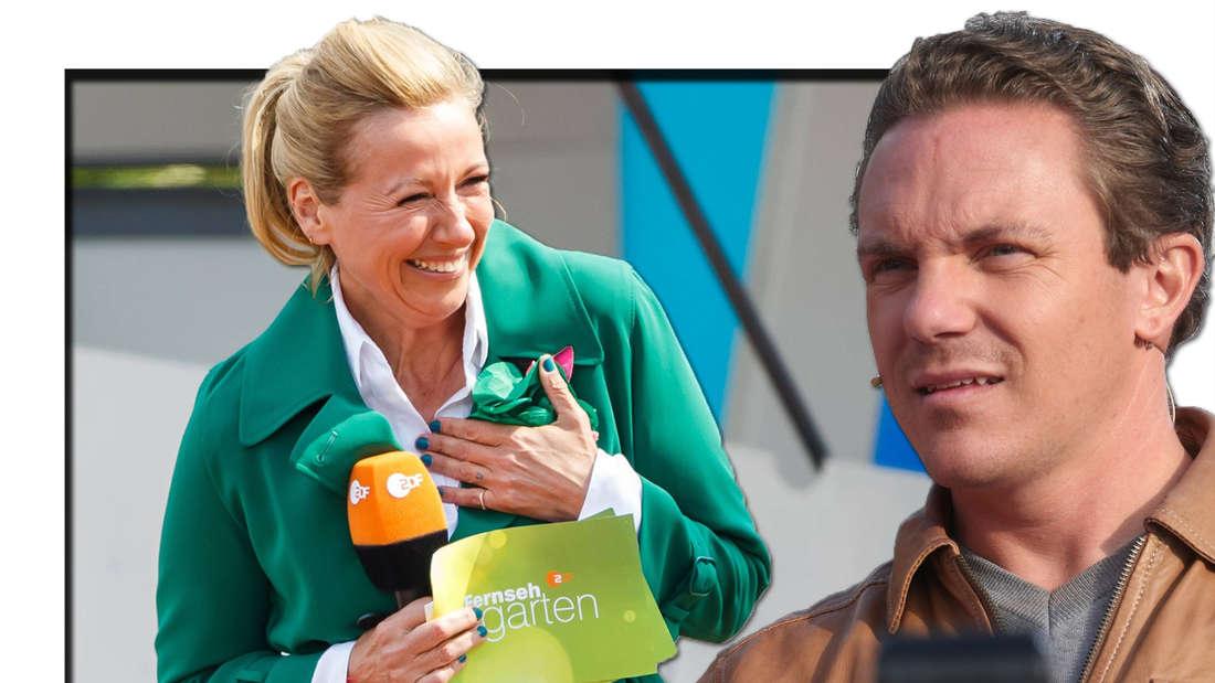Fernsehgarten gegen Immer wieder sonntags; Darum ist Kiwi besser als Stefan Mross (Fotomontage)