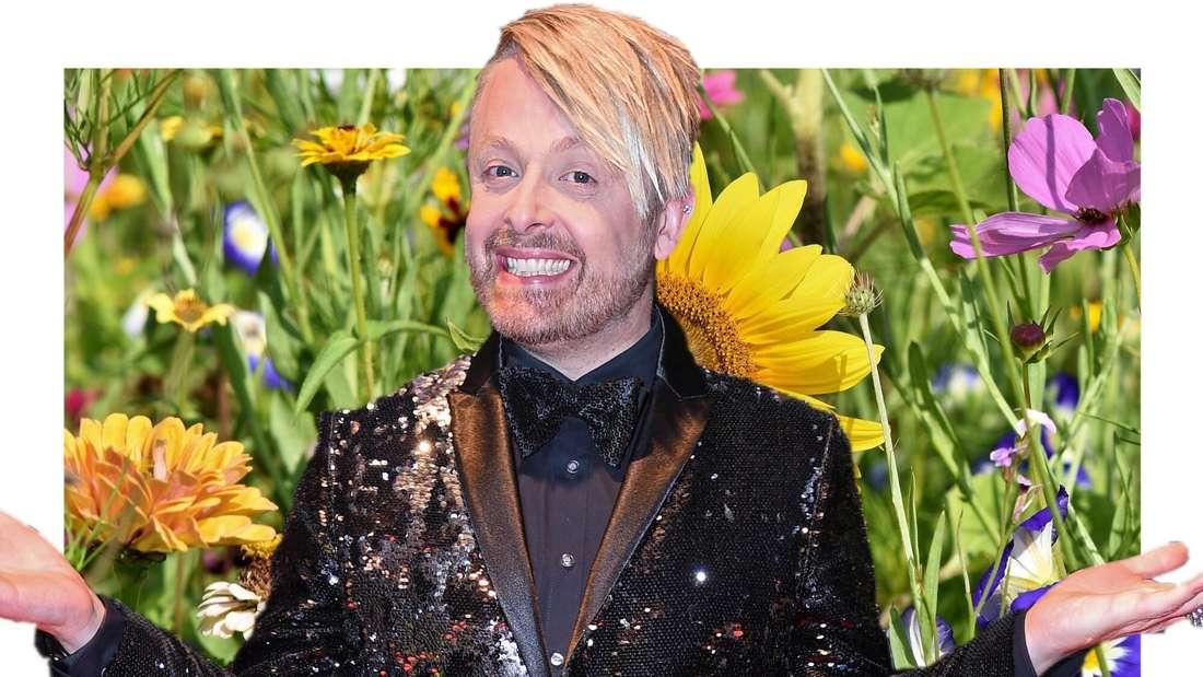 Ross Antony, im Hintergrund eine Blumenwiese (Fotomontage)