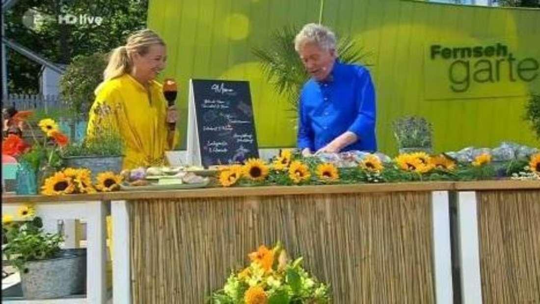 Andrea Kiewel steht im ZDF-Fernsehgarten neben Koch Armin Roßmeier