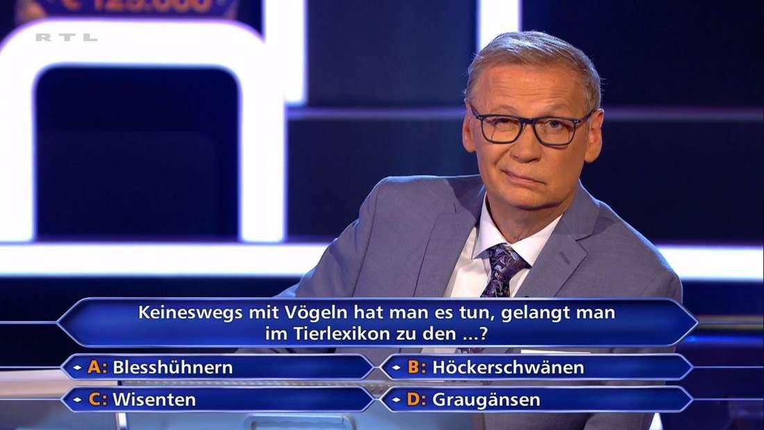 Günther Jauch schaut kritisch in die Kamera