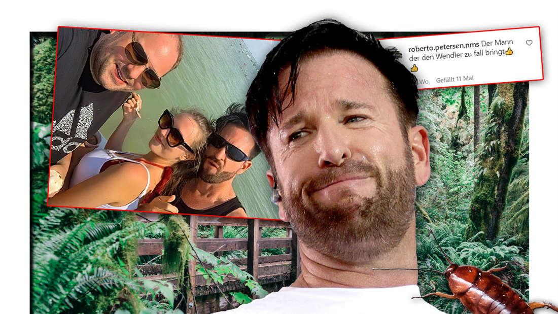 Schlagersänger Michael Wendler neben seinem Ex-Vertrauten Timo Berger und Laura, dahinter ein Dschungel und eine Kakerlake (Fotomontage)