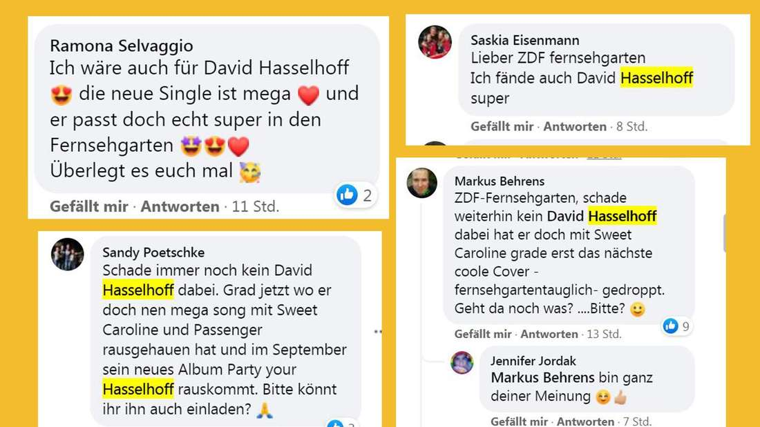Viele Zuschauer des ZDF Fernsehgartens wünschen sich statt Giovanni Zarrella den Besuch von David Hasselhoff.