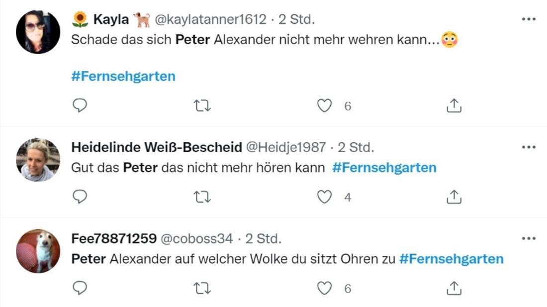 Twitter Kommentare über Andy Borg und Peter Alexander