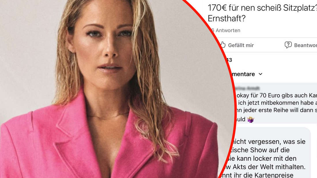 Pressefoto von Helene Fischer im pinken Blazer. Facebook-Screenshots auf einer Helene-Fischer-Fangruppe (Fotomontage)