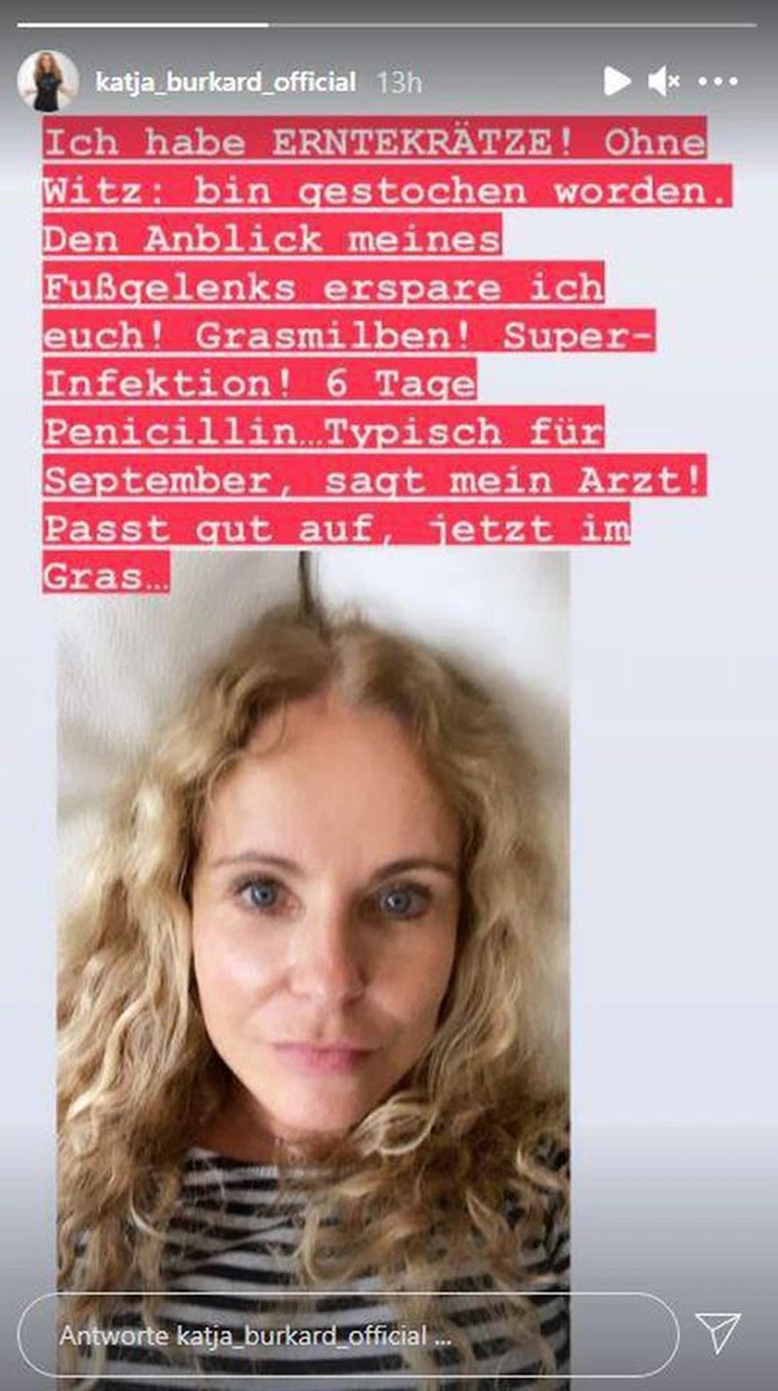 Katja Burkard auf Instagram-Story