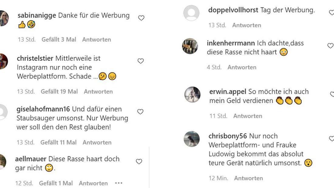 Kommentare von Fans