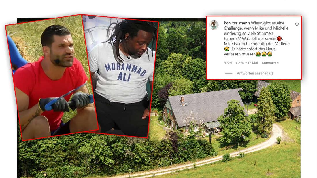 """Mike Cees und Mola Adebisi, daneben das """"Sommerhaus der Stars"""" und ein kritischer Instagram-Kommentar (Fotomontage)"""